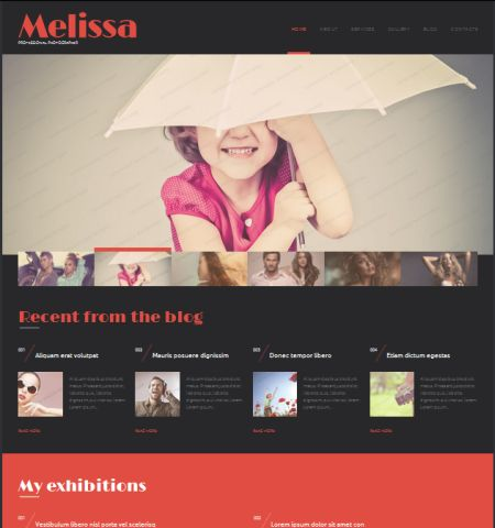 Photography Theme - WordPress Teması