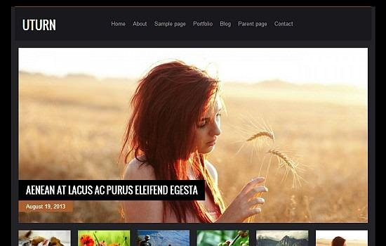 wordpress-ucretsiz-tema-1