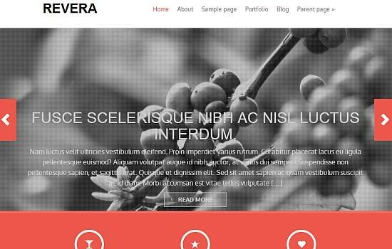 wordpress-ucretsiz-tema-7