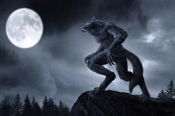 Warewolfs (Kurtadamlar)