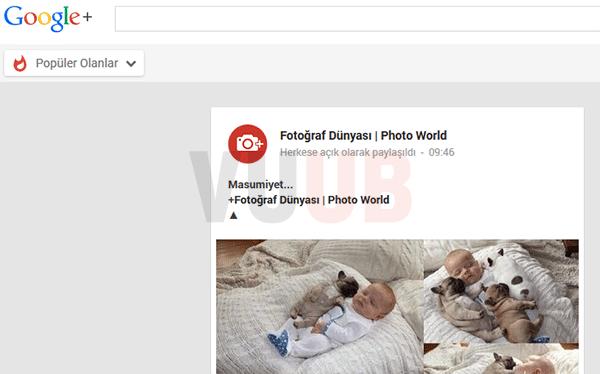 Google+ Popüler Olanlar Ekranı
