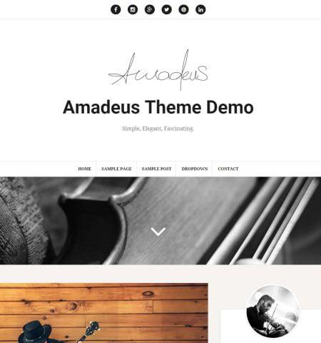 Amadeus - WordPress Teması
