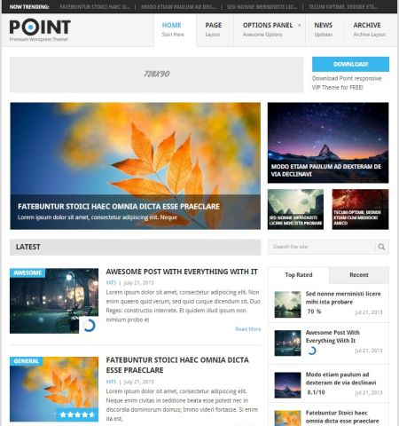 Point - WordPress Teması